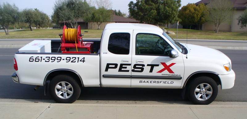 Bakersfield pest control companies, pest control Bakersfield, Pest X